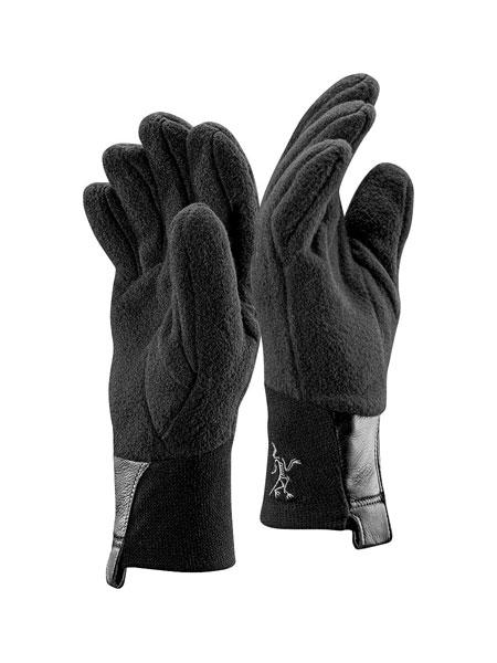 Arc'Teryx Delta AR Glove (Black)