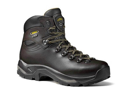 Asolo TPS 520 GV Hiking Boots Men's (Chestnut)