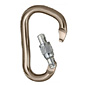 Black Diamond Rocklock Locking Carabiner (Screw Gate)