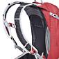 Osprey Manta 30 Backpack (Madcap Red)